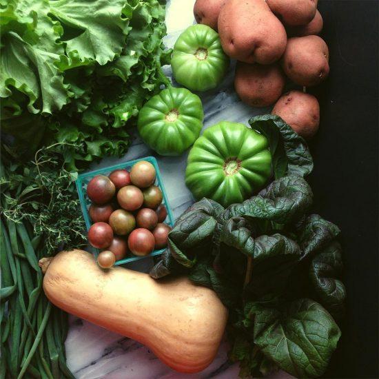 A Year of CSA Boxes + Farm Share FAQs